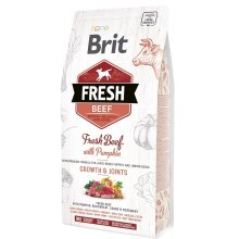 Brit Fresh Beef & Pumpkin Puppy Large Bones & Joints 2,5 kg