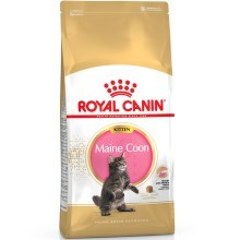 Royal Canin FBN Kitten Maine Coon 2 kg