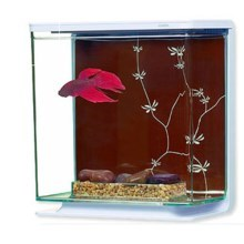 Marina Betta Kit Contemporary 3l