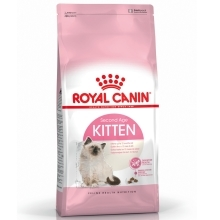 Royal Canin FHN Kitten 10 kg ARCHIV